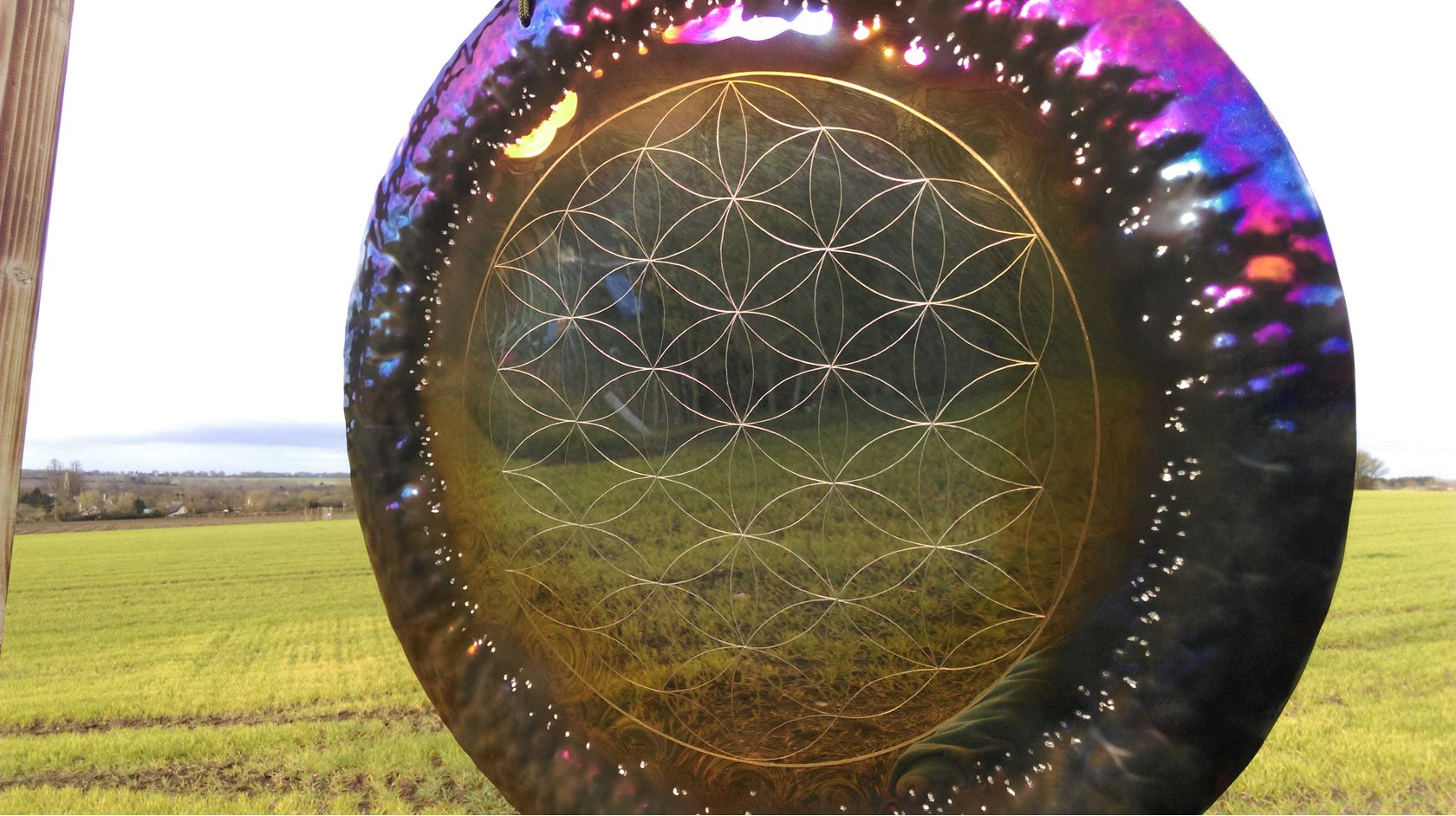 Flower of Life Detailing